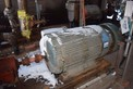 WESTINGHOUSE AC MOTOR HAS 3 PHASE 60 HZ 4000 VAC 200 HP