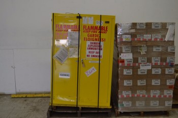 WILLIAMS 2961 FLAMMABLE SAFETY CABINET 40 X 62 X 15 IN