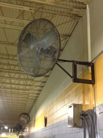 Lot of (8) Wall mounted Fans