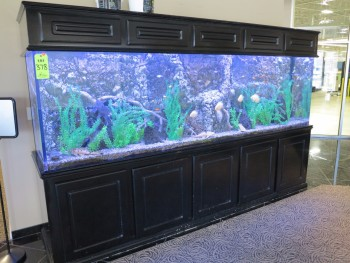 LARGE FISH AQUARIUM, 10'X34