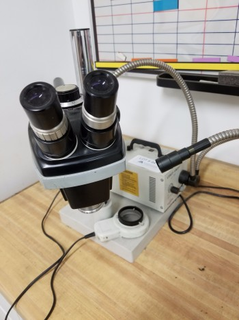 Accu Scope Microscope