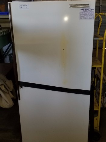 Stand up Freezer (working)