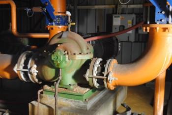 Crane De Ming Pump