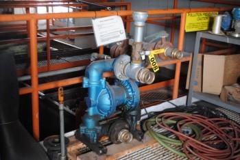 Sandpiper 2 Lung Air Pump